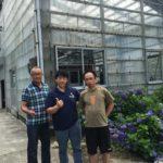 Taiwan business partner Sing Chang Koi Farm visited to Izumiya koi farm mud pond .