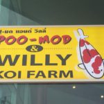 Poo-Mod and willy koi farm visit